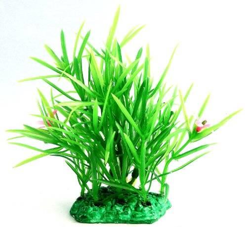 Aquarium Terrarium Wasserpflanze 1698 grün 14cm auf Stein PF58