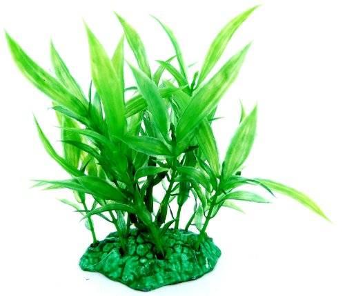 Pflanze 2947 Aquarium Terrarium Wasserpflanze 14cm auf Stein PF48
