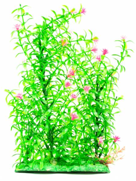 Aquarium Terrarium Wasserpflanze Grün 30cm auf Stein PF33 Plastik-Pflanze Wasser-Pflanzen für Aquarien