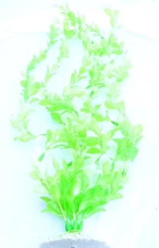 Aquarium-Pflanzen Terrarium-Deko Wasser-Pflanze 50cm auf Stein PF90
