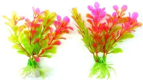 2 Aquarium Terrarium Wasserpflanzen pink 11cm auf Stein PF112