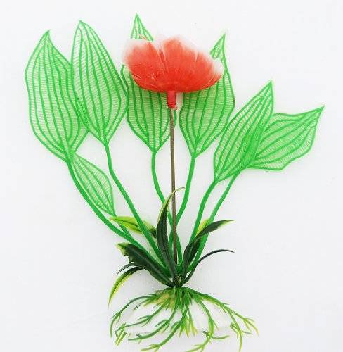 "Aquarium Terrarium 2262 Wasserpflanze 12cm ""Rose"" auf Stein PF37"