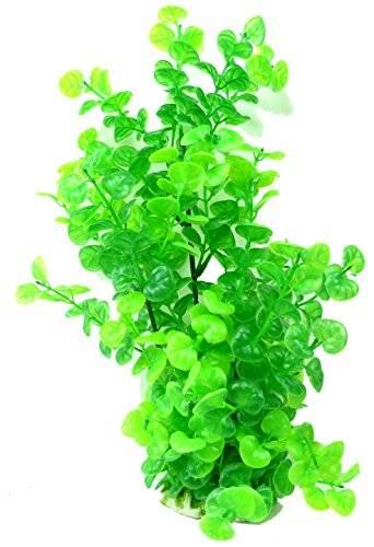Kunststoff dekorative Aquarium Pflanzen Terrarium Wasserpflanze 3770 Grün 30cm auf Stein PF30