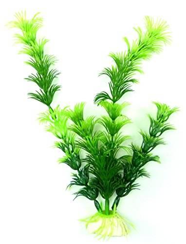 Pflanze 1358 Aquarium Terrarium Wasserpflanze Grün 19cm auf Stein PF125