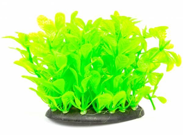 Aquarium Terrarium Pflanze neon grün 10cm auf Stein PF108 Plastik-Pflanze Wasser-Pflanzen für Aquarien
