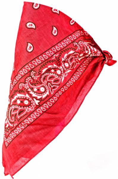 Herren Damen Kinder Nickituch rot Pasli. Muster weiss 54cm