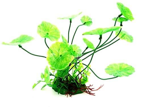 Pflanze Aquarium Water Plant Terrarium Wasserpflanze Grün 12cm auf Stein PF13