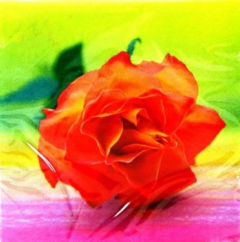 romantische Servietten 20 Stück 1601 Bunte Rote ROSE