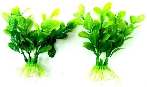Pflanzen 2620  Aquarium Pflanze 2Stk Terrarium Water Plants Deko Pflanzen grün 9cm auf Stein PF117