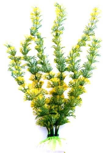 Pflanzen Aquarium-Pflanze grün gelb Plants Terrarium und Wasser-pflanze 31cm auf Stein PF88 5251