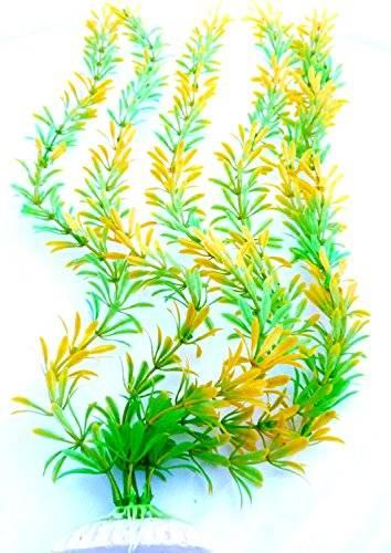 Pflanze 1954 Aquarium Pflanze grün-gelb Terrarium Deko Water Plants 30cm auf Stein PF91